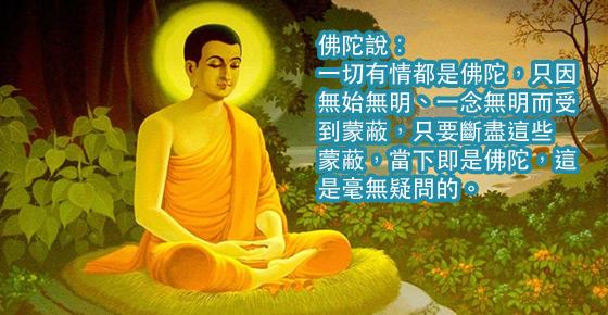 一切有情都是佛陀,只因無始無明、一念無明而受到蒙蔽,只要斷盡這些蒙蔽,當下即是佛陀,這是毫無疑問的。